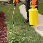Additional Landscaping Gardening Services